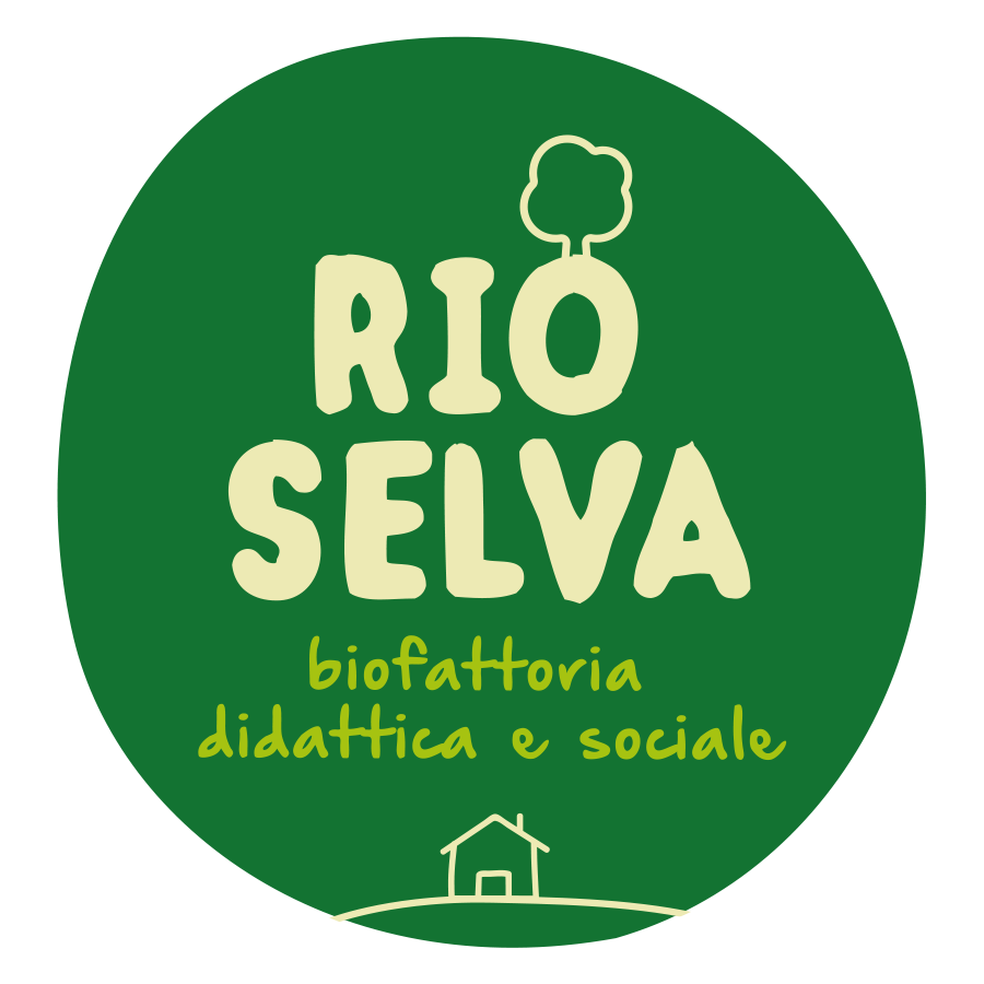 logo-RIO-SELVA